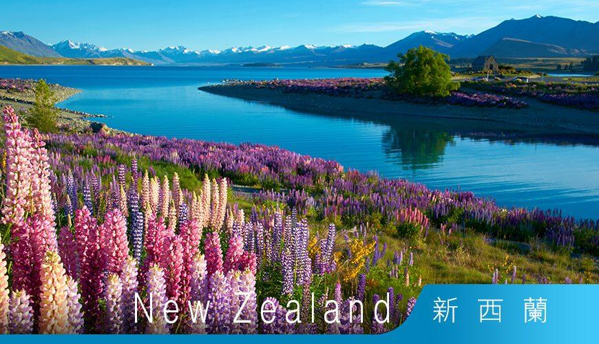 新西蘭移民 工作簽證